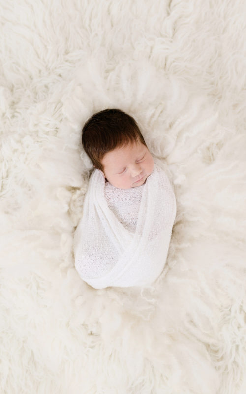 Newborn Gallery Category